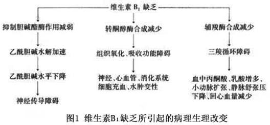 电路 电路图 电子 设计 素材 原理图 528_246